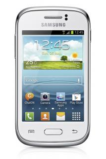 Samsung Galaxy Young (S6310) NFC White
