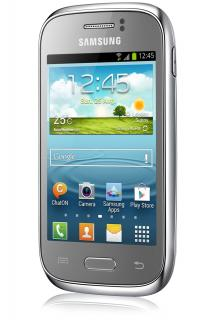 Samsung Galaxy Young (S6310) NFC Silver